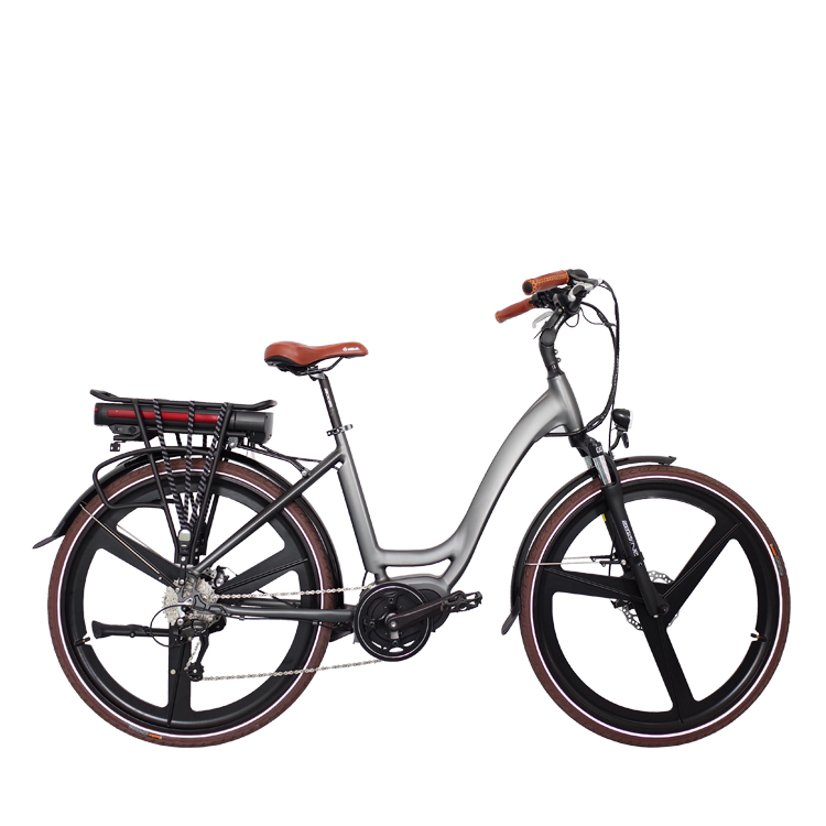 250w Motor Mid Drive City Electric Bike with CE